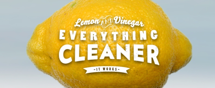 Easy DIY Lemon-Vinegar Everything Cleaner — works just as well as all those fancy cleaners, and costs next-to-nothing to make! thecrunchyurbanite.com