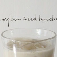 Pumpkin Seed Horchata