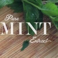 Pure Mint Extract